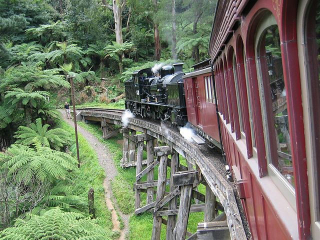 Puffing Billy Train Ride.