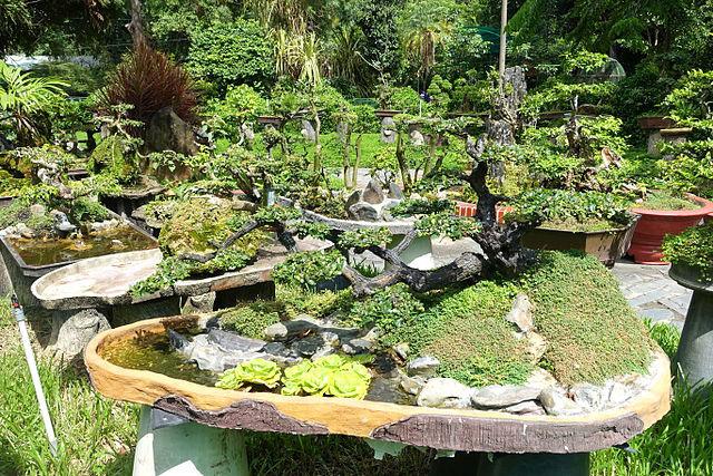 Saigon Zoo and Botanical Gardens.