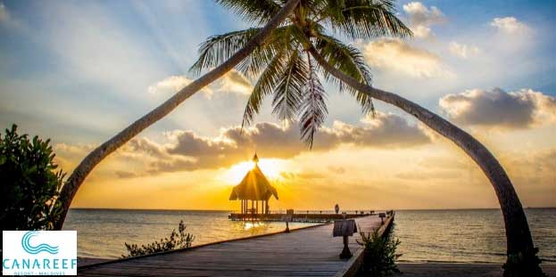Canareef Resort Maldives 4 From C E Holidays