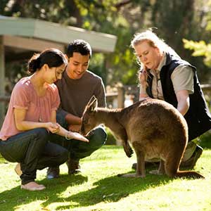 Australia Tour Package from Chan's World Holidays