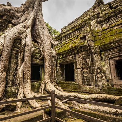 4D EXPERIENCE SIEM REAP (KH4EP) from Chan Brothers Travel