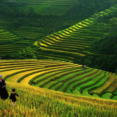 6D5N NORTHERN VIETNAM + SAPA from Chan Brothers Travel
