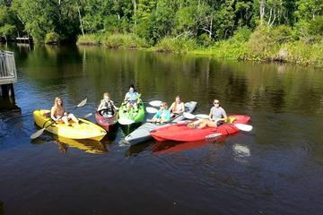 Guided Kayak Tours Amelia Island