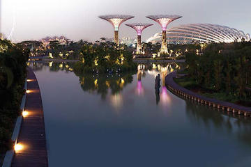 Admission Ticket To Gardens By The Bay In Singapore With Transport From Viator